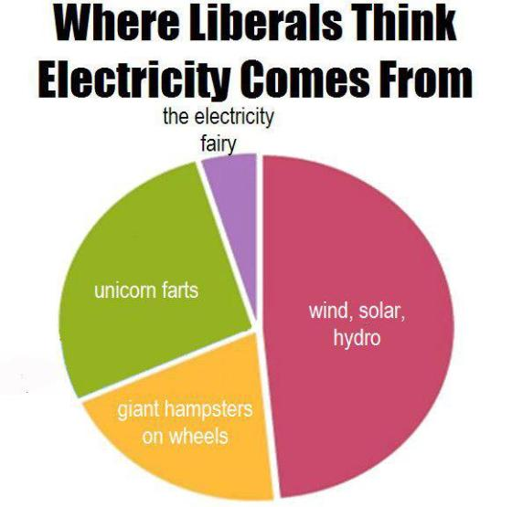 Where the libs think electricity comes from
