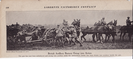 With few exceptions artillery in WW1 was moved about via horsepower. As late as WW2 horses were the prime movers of artillery in the armies of many countries.